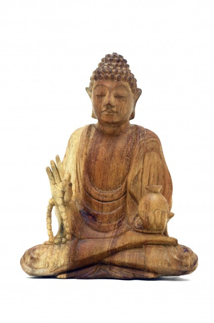 Medicine Buddha with Mala 8